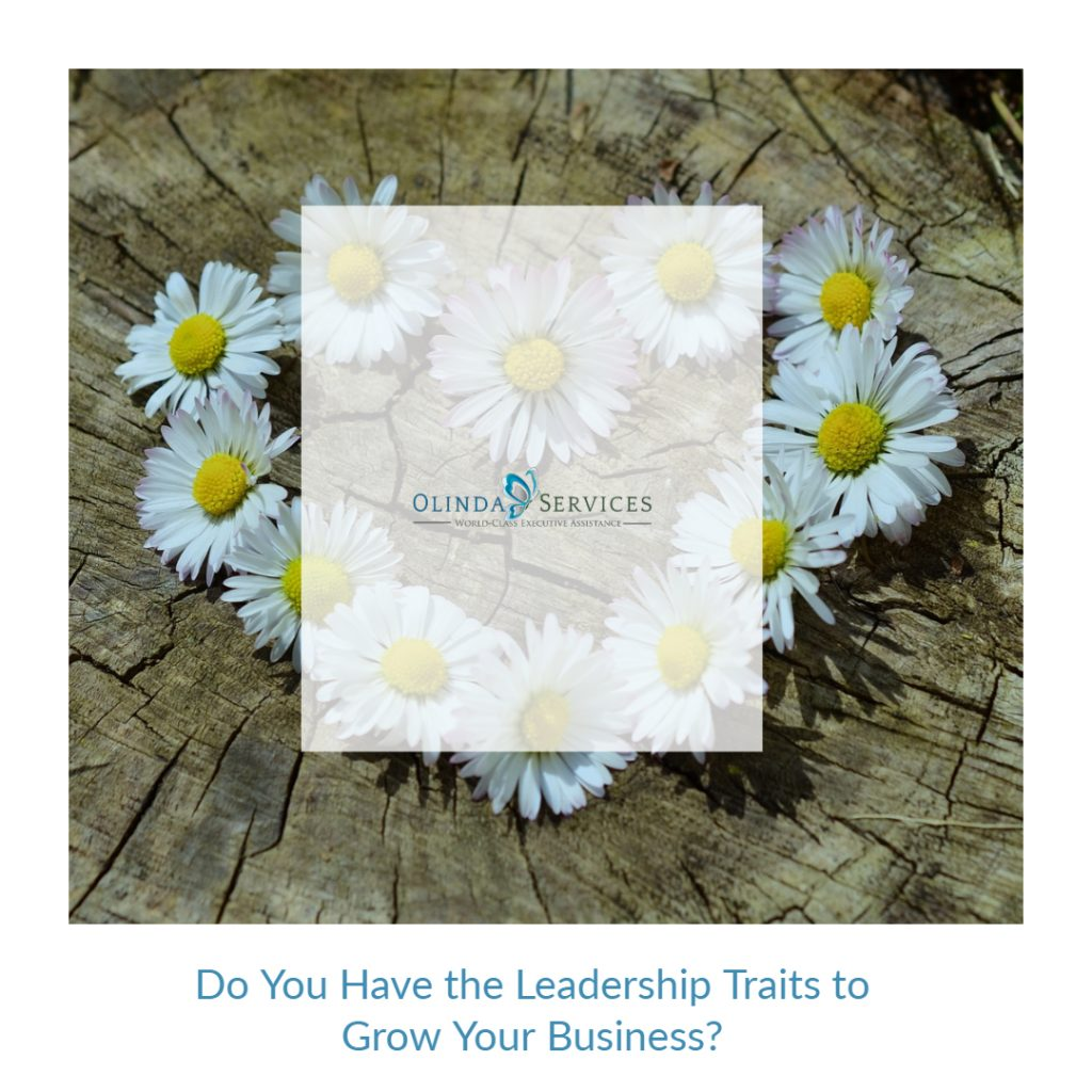 Do You Have the Leadership Traits to Grow Your Business