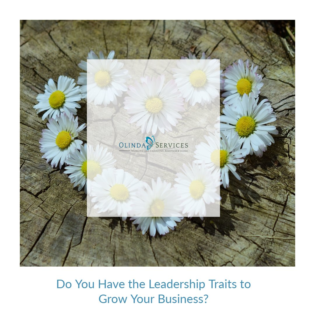 Do you have the leadership traits to grow your business?