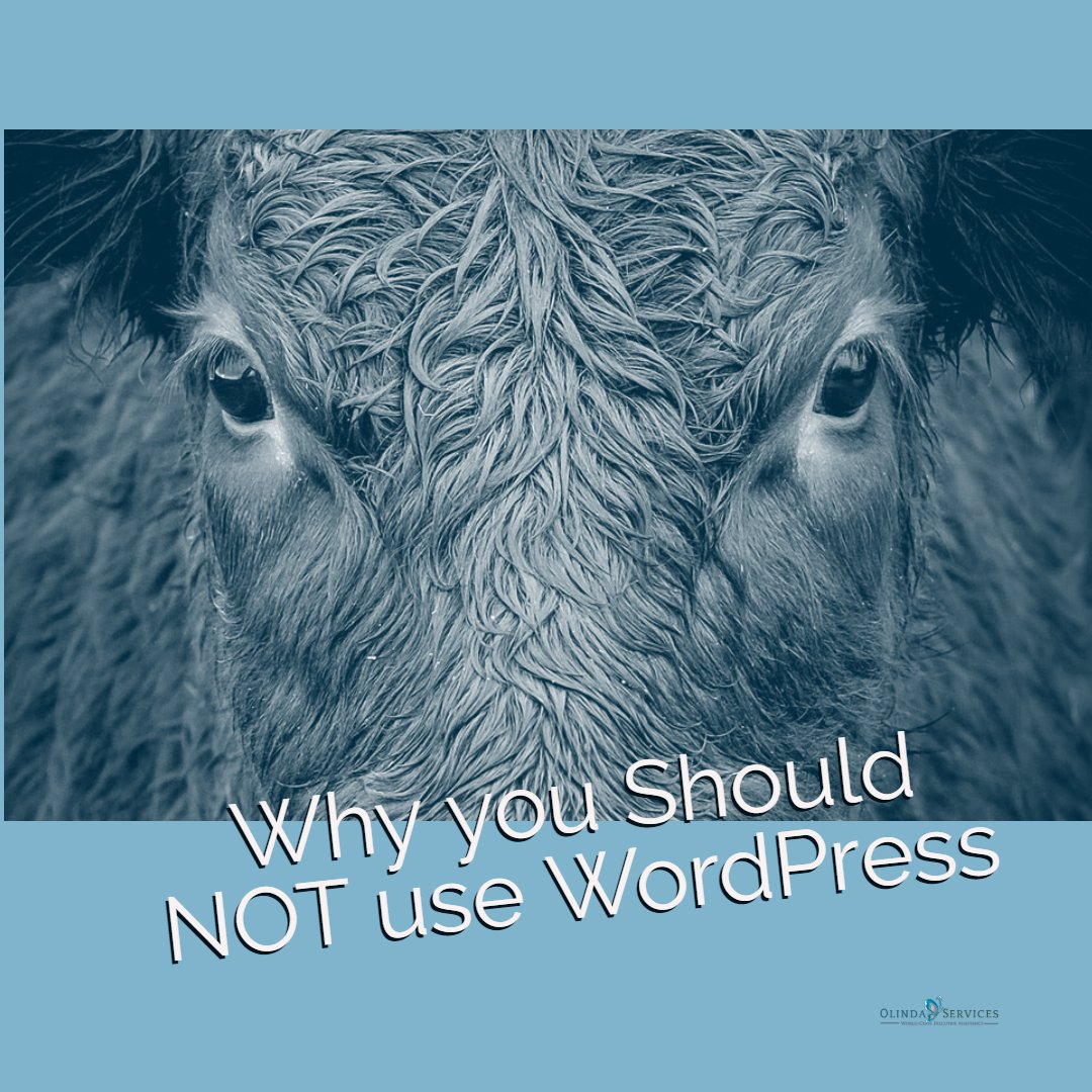 Why You Should NOT Use WordPress