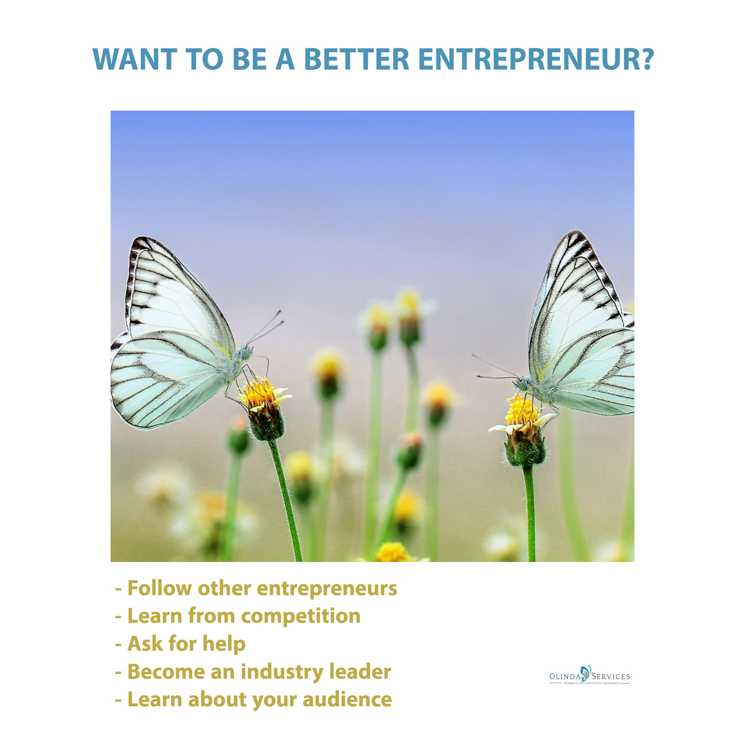 Better Entreprenuer