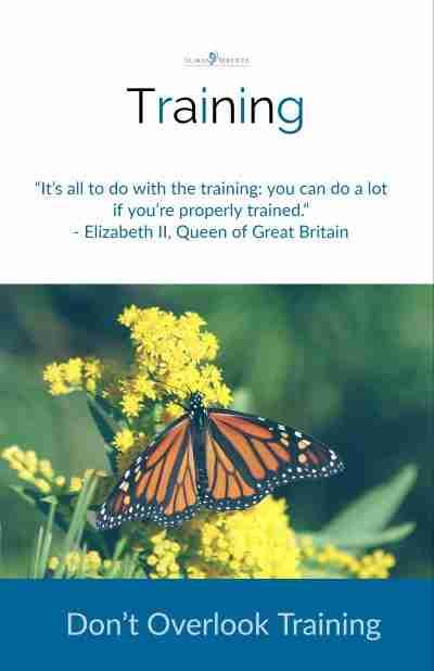 Don't Overlook Training